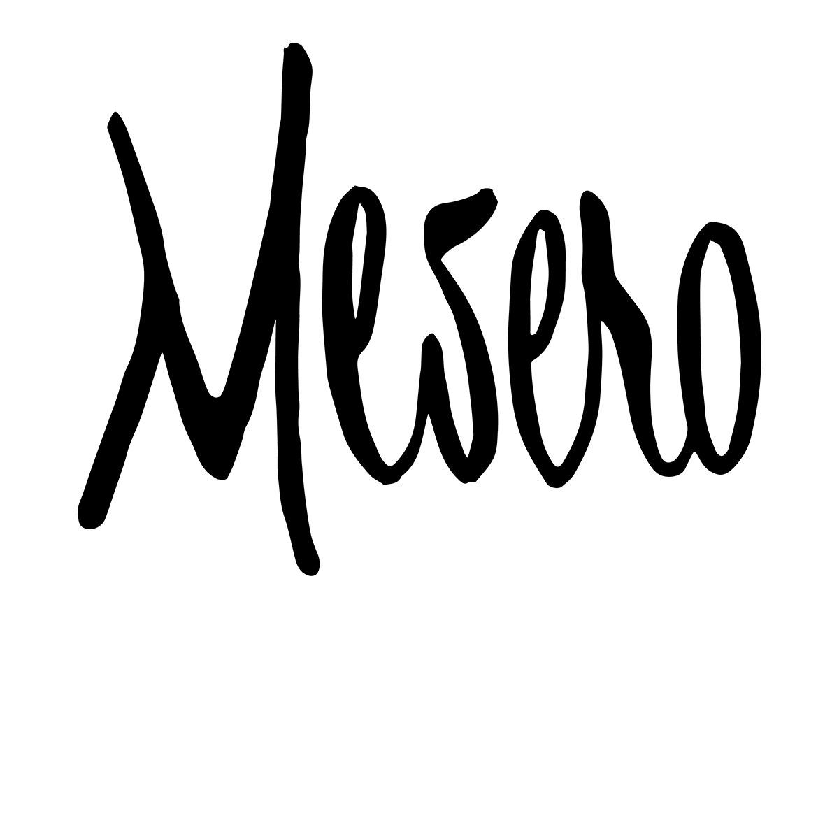 Mesero Restaurant Group